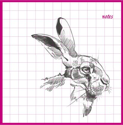 Hare Head Notebook